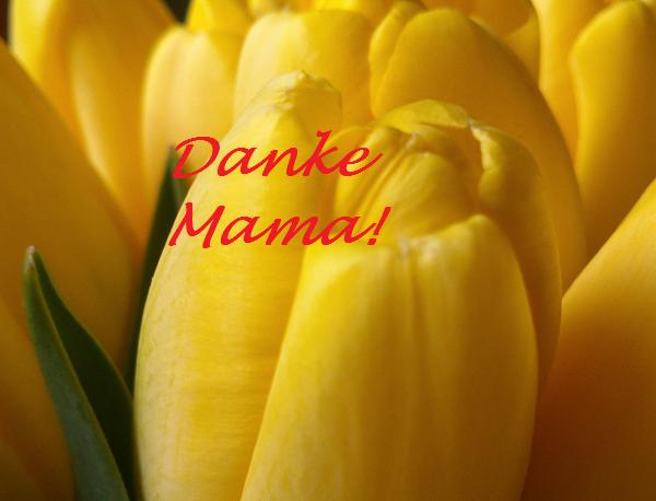 День Матери 10 мая 2015