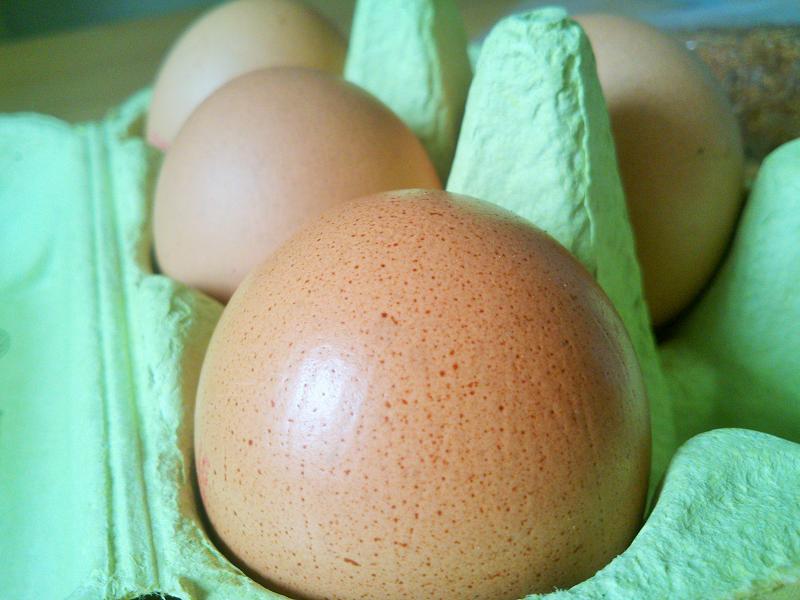 Вреден ли яичный желток?